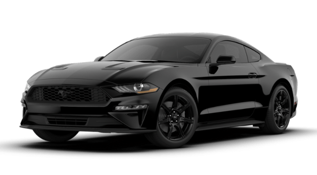 2019 Ford Mustang Ecoboost Fastback coupe For Sale in Louisville
